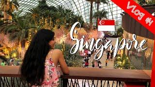 Changi Airport, Little India, Gardens by the Bay   Singapore travel vlog #1