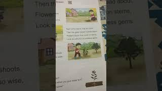 Seed to Flower... English... Lesson 8..Class 2